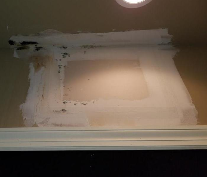 Mold Growth and Removal