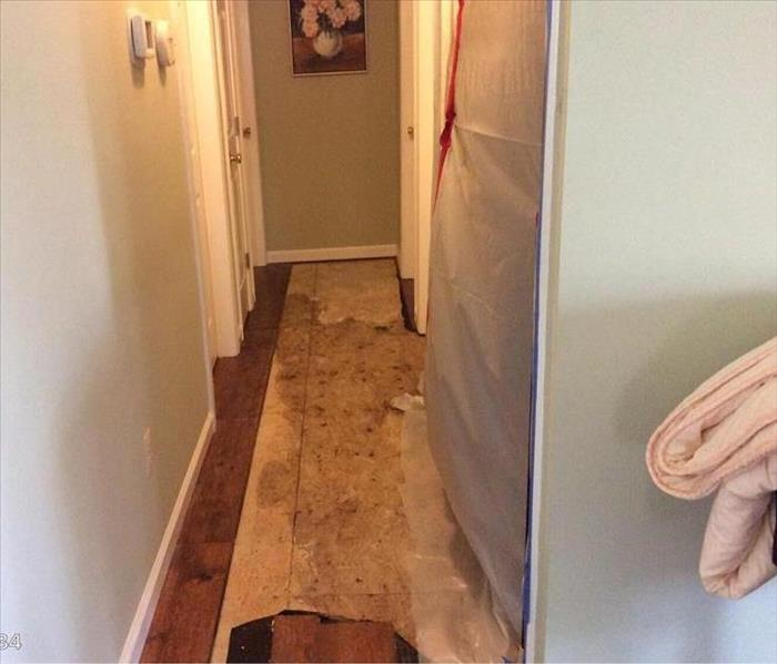 Water Damage Got Water Damage? Four Things You Need to Know.