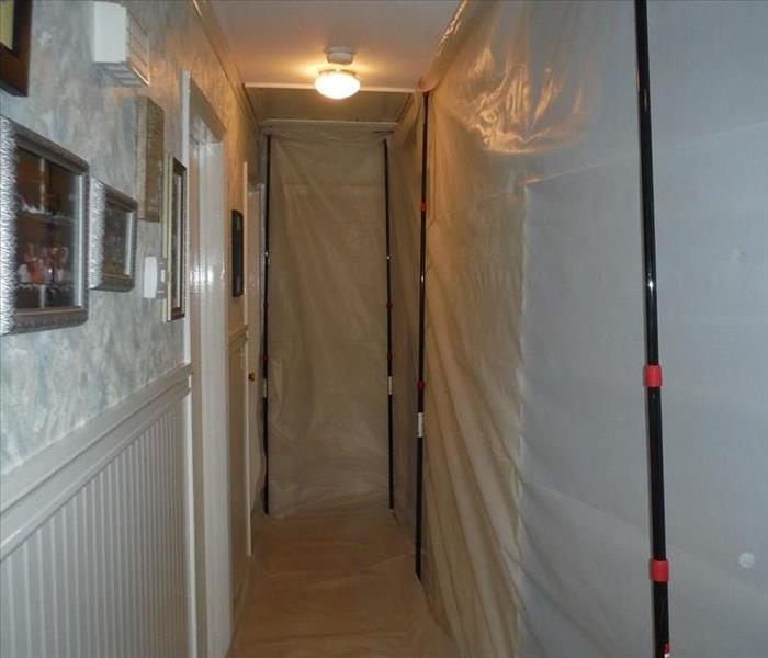 Mold Remediation A Water Intrusion Quickly Becomes a Mold Problem