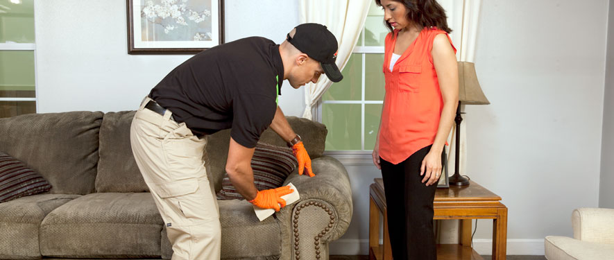Point Pleasant, NJ carpet upholstery cleaning