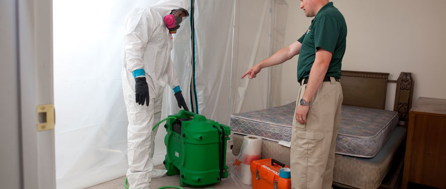 Point Pleasant, NJ mold removal process